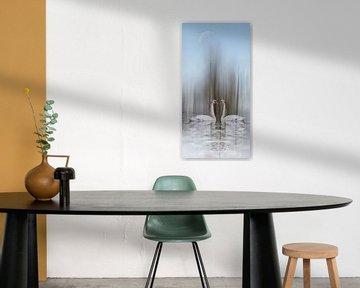 Schwanensee -Liebe im Winter von Christine Nöhmeier