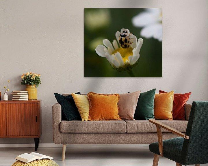 Beispiel: Lieveheersbeestje geel von sandra ten wolde