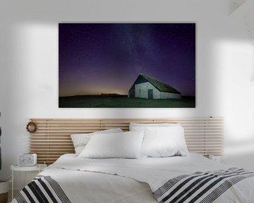Texel foto Schapen boet bij nacht van Natuurlijk schoon