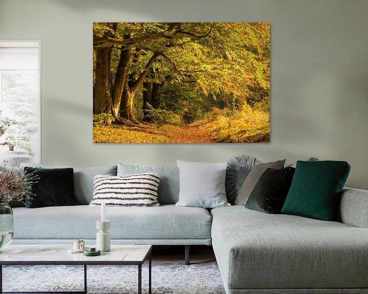 Sfeerimpressie: Bos in herfstkleuren van Ilya Korzelius
