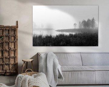 Misty Fen View