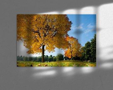 Herfst in Volendam van Jack Koning