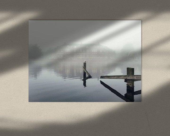 Sfeerimpressie: Haarlem: Meeuw in de mist. van Olaf Kramer