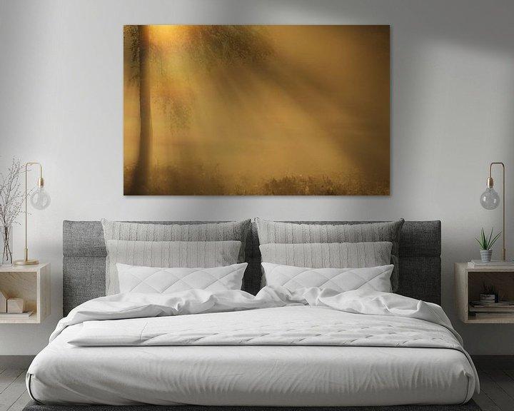 Impression: Mystical lights sur Hans Koster