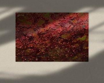 mars, lava burning terra van cees vermeulen windsant