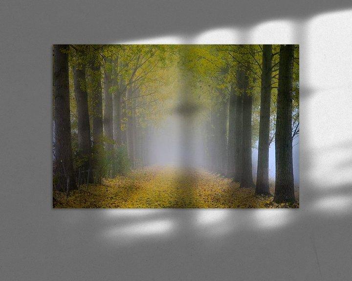 Sfeerimpressie: Into the white van Jaco Verheul