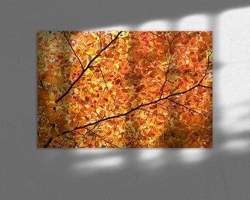 Herfst bladeren von Irene Lommers