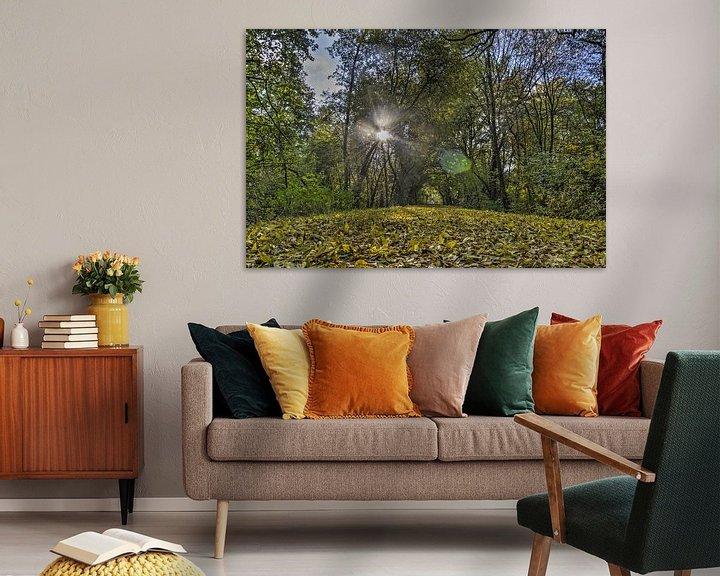 Sfeerimpressie: Herfst in Zestienhoven van Frans Blok