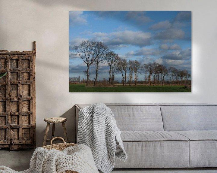 Sfeerimpressie: bomenrij buitengebied Gemonde, Sint-Michielsgstel van Arnoud Kunst