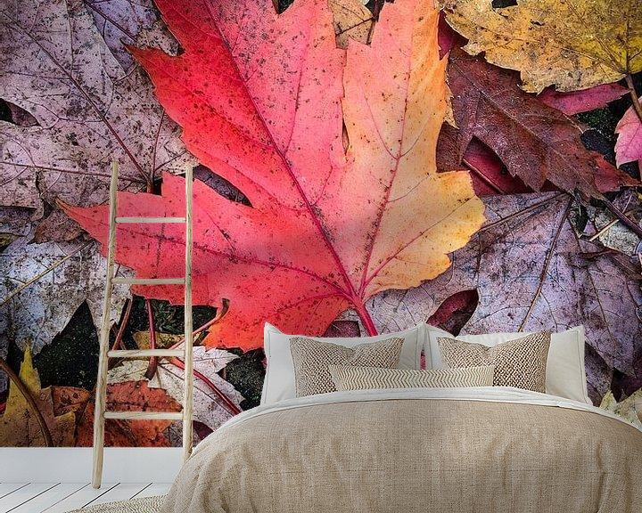 Sfeerimpressie behang: Herfst passie van Nanouk el Gamal - Wijchers (Photonook)