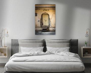 Doors of India van Margo Smit