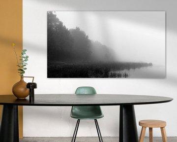 Vanishing Fog