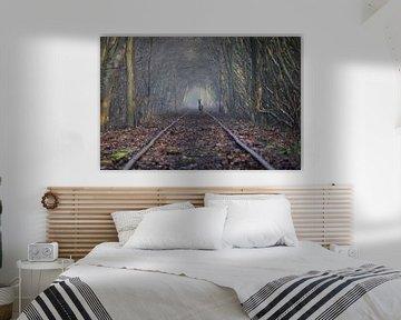 Ree op verlaten spoorweg... van Maarten Honinx