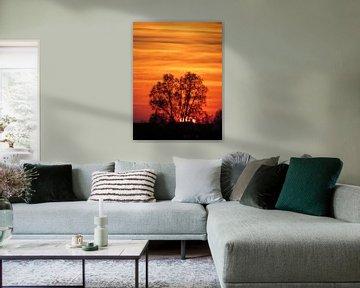 Zonsondergang op het platteland van Pieter Korstanje