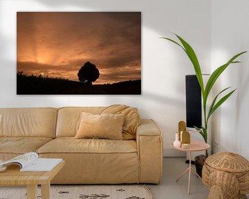 Boompje in de zonsondergang van Maarten Honinx