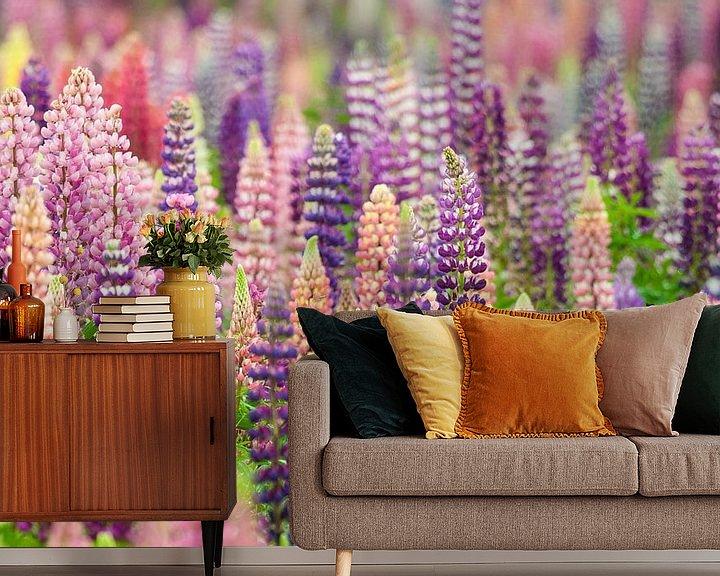 Sfeerimpressie behang: Bloemenveld met roze en paarse lupine bloemen van Caroline Piek