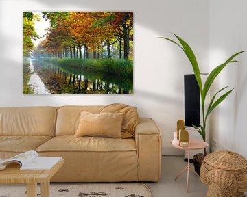 Herfst kleurt het Apeldoorns kanaal van Edwin van Rossen