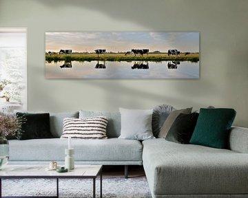 cow reflection von M K