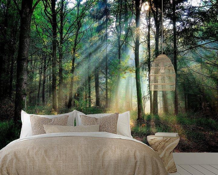 Sfeerimpressie behang: Zonnestralen ll van Rigo Meens