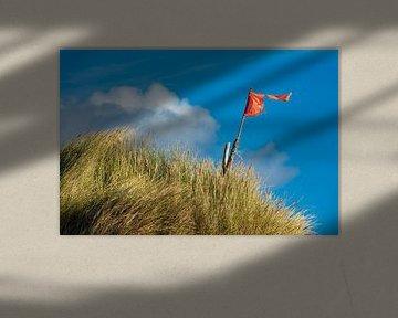 Landschaft mit Dünen auf der Insel Amrum von Rico Ködder