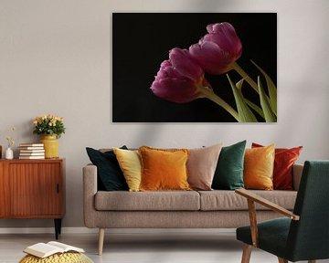 Twee roze tulpen van Mariëlle Heerdt