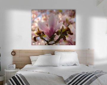 Magnolia bloem van Anita van Gendt