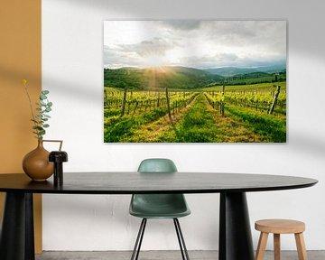 Prachtige landschapsfoto van een wijngaard in Toscane van Natascha Teubl