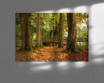 Kastanjebomen laten als eerste hun bladeren vallen von Niels Heinis