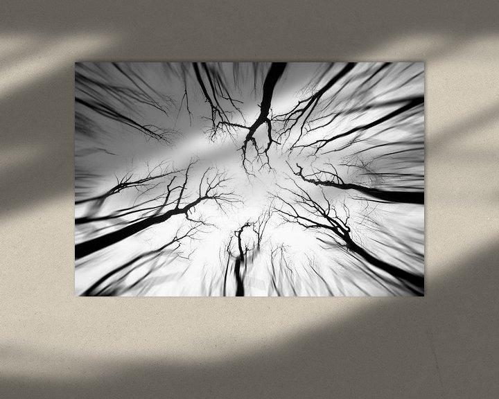 Sfeerimpressie: Hemelse rust van Bert Beekmans