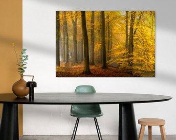 Life is a Painting van Lars van de Goor