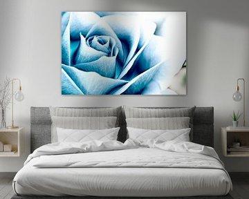 Blauwe roos van John Groen