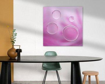 Pink bubbles van LHJB Photography