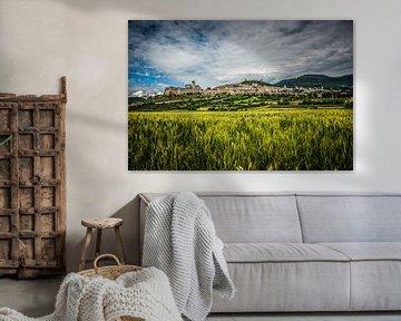 Kerkendorp Assisi - Umbrie van Dennis van Berkel