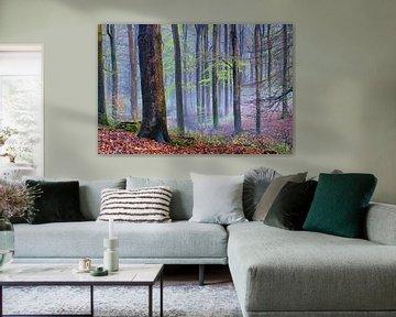 Blauwe nevel in het beuken bos van Cor de Hamer