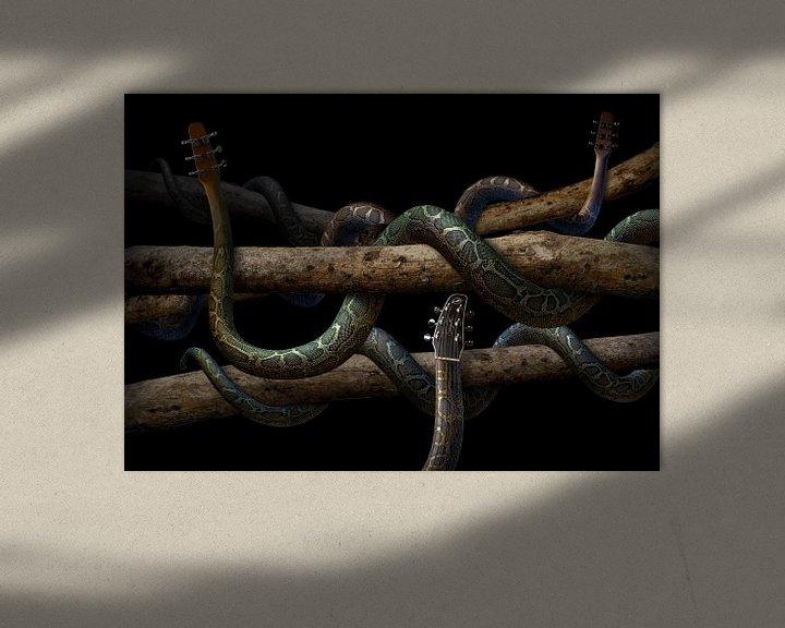 Sfeerimpressie: Guitarra Anaconda van Olaf Bruhn
