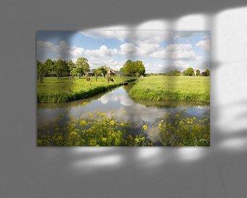 Het landschap van de Langbroekerwetering