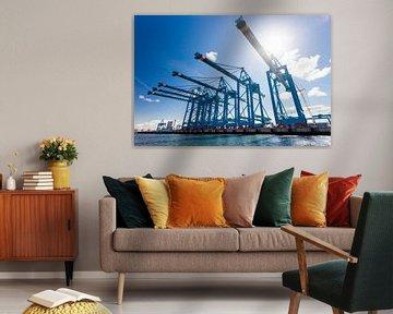 Haven Rotterdam Tweede Maasvlakte van Bart van Eijden