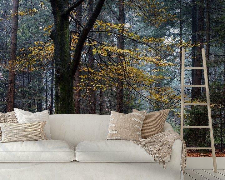 Sfeerimpressie behang: Autumn Beech van William Mevissen