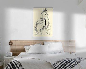 Paard Arab