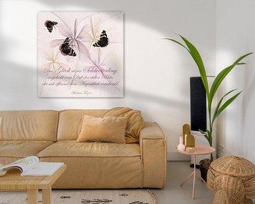 Das Glück ist ein Schmetterling von Christine Nöhmeier