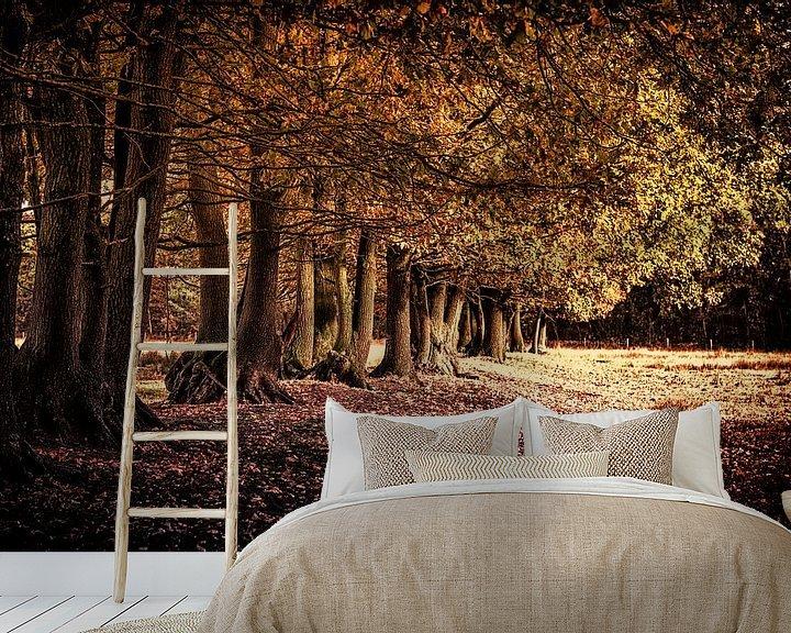 Sfeerimpressie behang: Herfst van Sandra Kuijpers