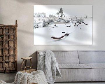 Sneeuw op de heide van Hoog Buurlo