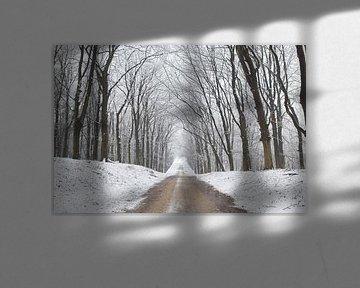 Winter laan