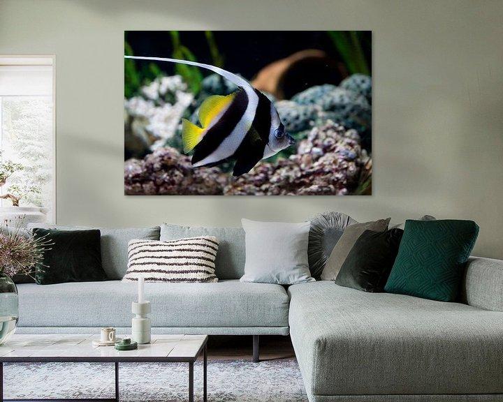 Sfeerimpressie: Zeeleven van Guido Akster