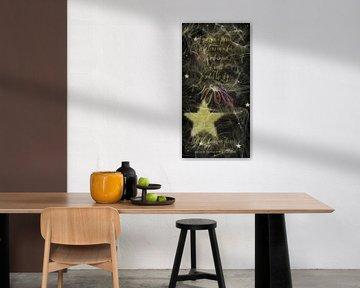 Alle Sterne haben Blumen....... von Christine Nöhmeier