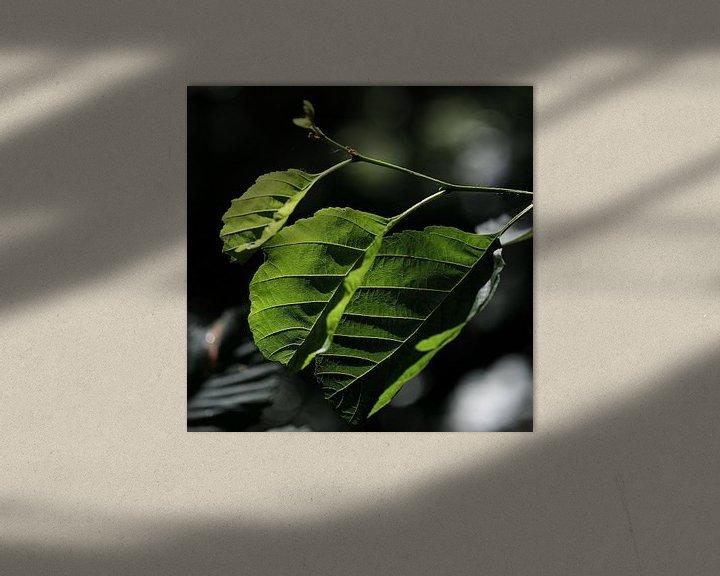Sfeerimpressie: Green leaves van Rudy De Maeyer