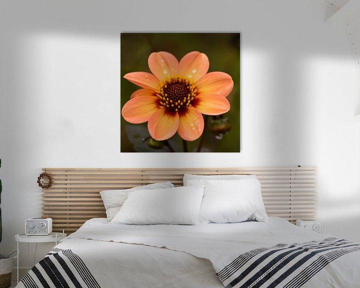 Sfeerimpressie: Flower with raindrops van Greetje van Son