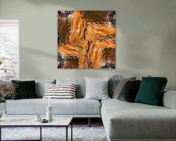 Bark 005 van Jeroen van der Meij