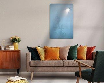 Mysterious 'Soft bleu' von Greetje van Son