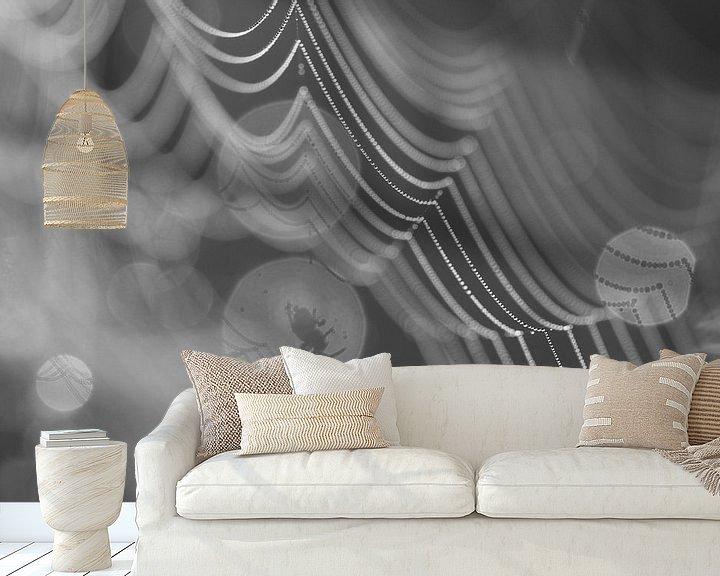 Beispiel fototapete: Griezelige spin in zijn web in zwart wit. von Astrid Brouwers